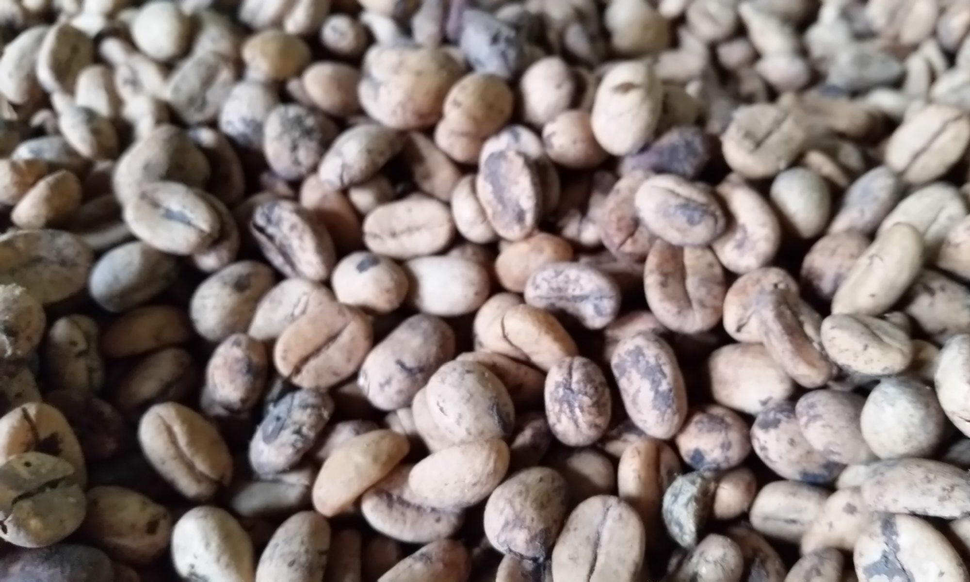 www.espressomaschine.de - News über die braunen Bohnen